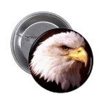 Weißkopfseeadler-Amerikaner Eagle Anstecknadelbutton