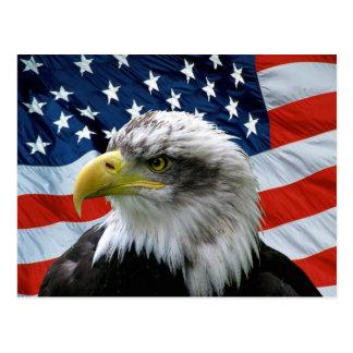 Weißkopfseeadler-amerikanische Flagge Postkarte