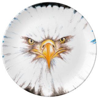 Weißkopfseeadler-Anstarren Teller