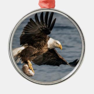 Weißkopfseeadler-anziehende Nahrung Rundes Silberfarbenes Ornament
