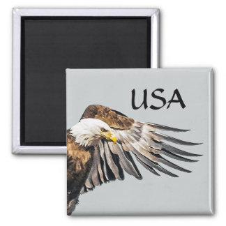Weißkopfseeadler auf dem Flügel Quadratischer Magnet