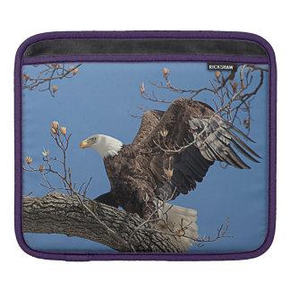 Weißkopfseeadler auf einem Baumast iPad Sleeve