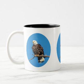 Weißkopfseeadler auf einem Baumast Zweifarbige Tasse