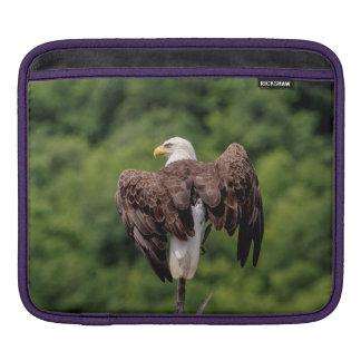 Weißkopfseeadler auf einer Niederlassung iPad Sleeve
