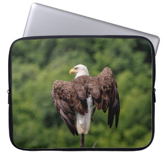 Weißkopfseeadler auf einer Niederlassung Laptopschutzhülle
