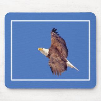Weißkopfseeadler-Augen zum Himmel Mousepad