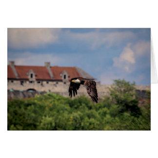 Weißkopfseeadler, der Fort Ticonderoga führt Karte