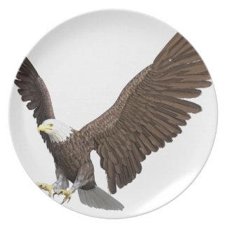 Weißkopfseeadler, der für eine Landung hereinkommt Teller
