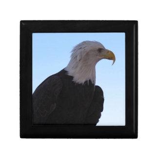 Weißkopfseeadler Erinnerungskiste