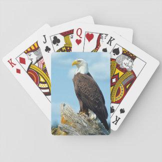 Weißkopfseeadler gehockt auf Klotz, Kanada Spielkarten