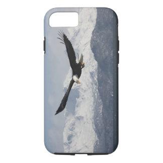 Weißkopfseeadler im Flug, Haliaeetus iPhone 8/7 Hülle