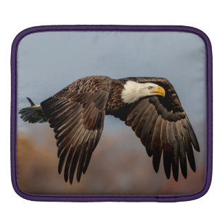Weißkopfseeadler im Flug Sleeve Für iPads
