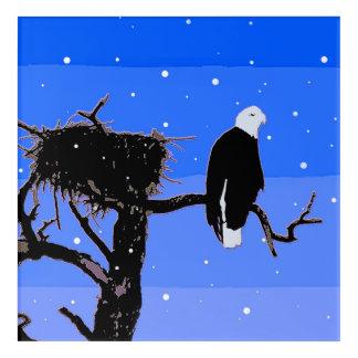 Weißkopfseeadler im Winter - ursprüngliche Acryldruck