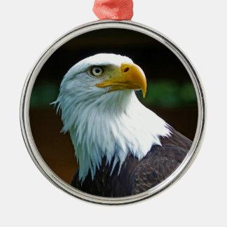 Weißkopfseeadler-Kopf Rundes Silberfarbenes Ornament
