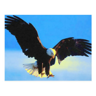 Weißkopfseeadler-Landungs-Postkarte Postkarte