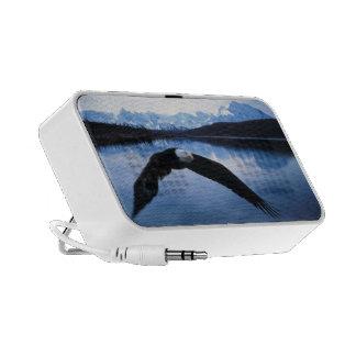 Weißkopfseeadler iPhone Speaker
