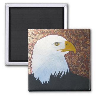 Weißkopfseeadler-Magnet Quadratischer Magnet