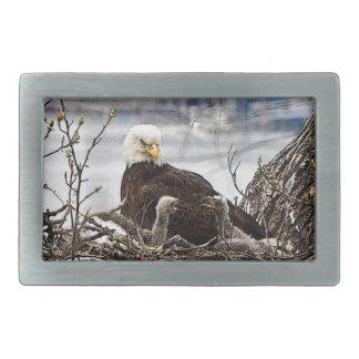 Weißkopfseeadler mit eaglets rechteckige gürtelschnalle