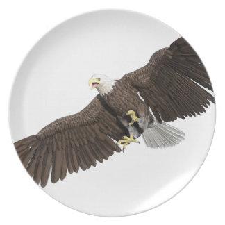 Weißkopfseeadler mit Flügeln auf unten streichen Teller