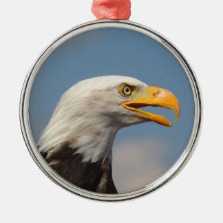 Weißkopfseeadler,Porträt,Nahaufnahme, Rundes Silberfarbenes Ornament