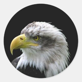 Weißkopfseeadler Runder Aufkleber