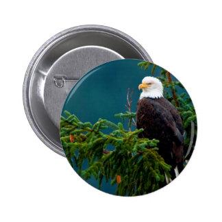 Weißkopfseeadler Runder Button 5,7 Cm