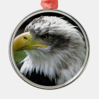 Weißkopfseeadler Rundes Silberfarbenes Ornament