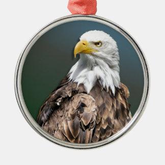 weisskopfseeadler rundes silberfarbenes ornament