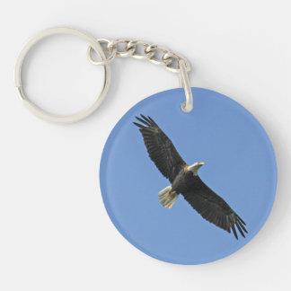 Weißkopfseeadler Schlüsselring