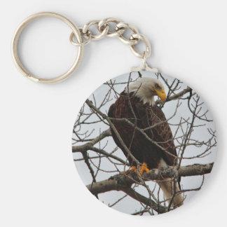 Weißkopfseeadler Standard Runder Schlüsselanhänger