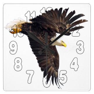 Weißkopfseeadler-Tauchen Quadratische Wanduhr