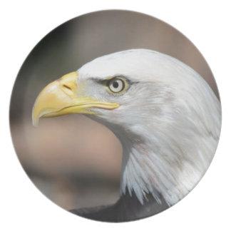 Weißkopfseeadler Teller