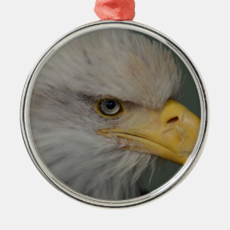 Weißkopfseeadler von Alaska USA Rundes Silberfarbenes Ornament