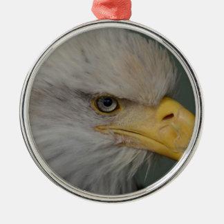 Weißkopfseeadler von Alaska USA Silbernes Ornament