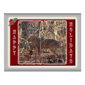 Weißwedelhirsch-frohe Feiertage Einzelteile Postkarte
