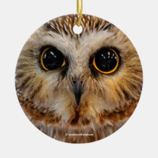 Weit mit Augen mit Wunder: Sah Whet Eule Rundes Keramik Ornament