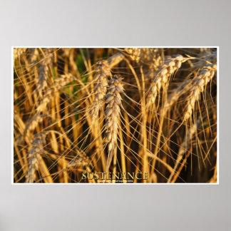 Weizen-Feld-landwirtschaftliches Poster