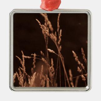 Weizengras Quadratisches Silberfarbenes Ornament
