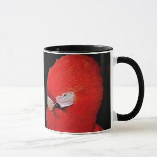 Welcher jetzt kleine Papagei Tasse
