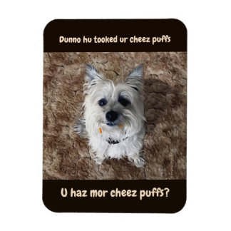 Welcher Käse stößt luft? Flexibler Magnet