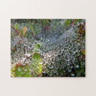 Welle des Taus in einem Spinnen-Netz Puzzle