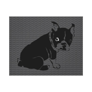 Welpe Bostons Terrier Schuss Gespannte Galerie Drucke