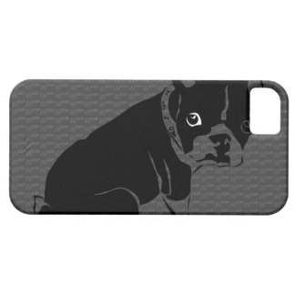Welpe Bostons Terrier Schuss iPhone 5 Case