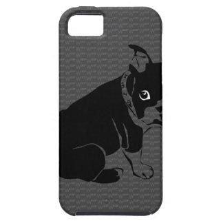 Welpe Bostons Terrier Schuss iPhone 5 Cover