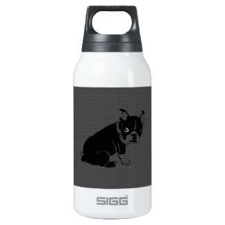 Welpe Bostons Terrier Schuss Isolierte Flaschen