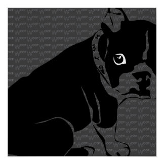 Welpe Bostons Terrier Schuss Perfektes Poster