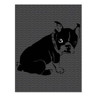 Welpe Bostons Terrier Schuss Postkarte