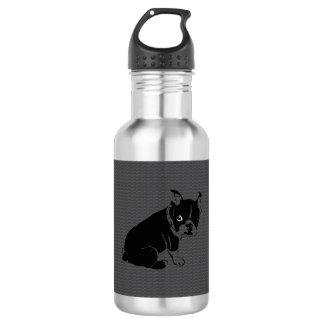 Welpe Bostons Terrier Schuss Trinkflaschen