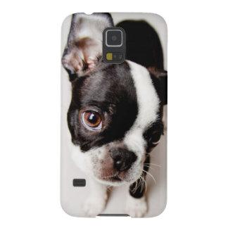 Welpe Edison Boston Terrier Galaxy S5 Cover