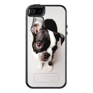 Welpe Edison Boston Terrier OtterBox iPhone 5/5s/SE Hülle